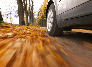 a car driving on a road covered in autumn leaves